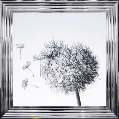 Dandelions - Blowing Left - Chrome Frame