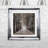 Path Ahead - Tree Walk - Scoop Frames - Mounted