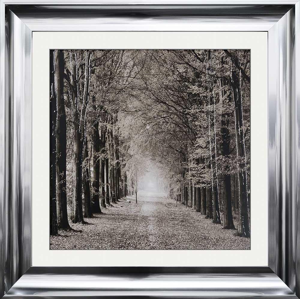 The Path Ahead (Chrome Scoop 75 Frame)