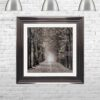 Path Ahead - Tree Walk - Metallic Frames - Mounted