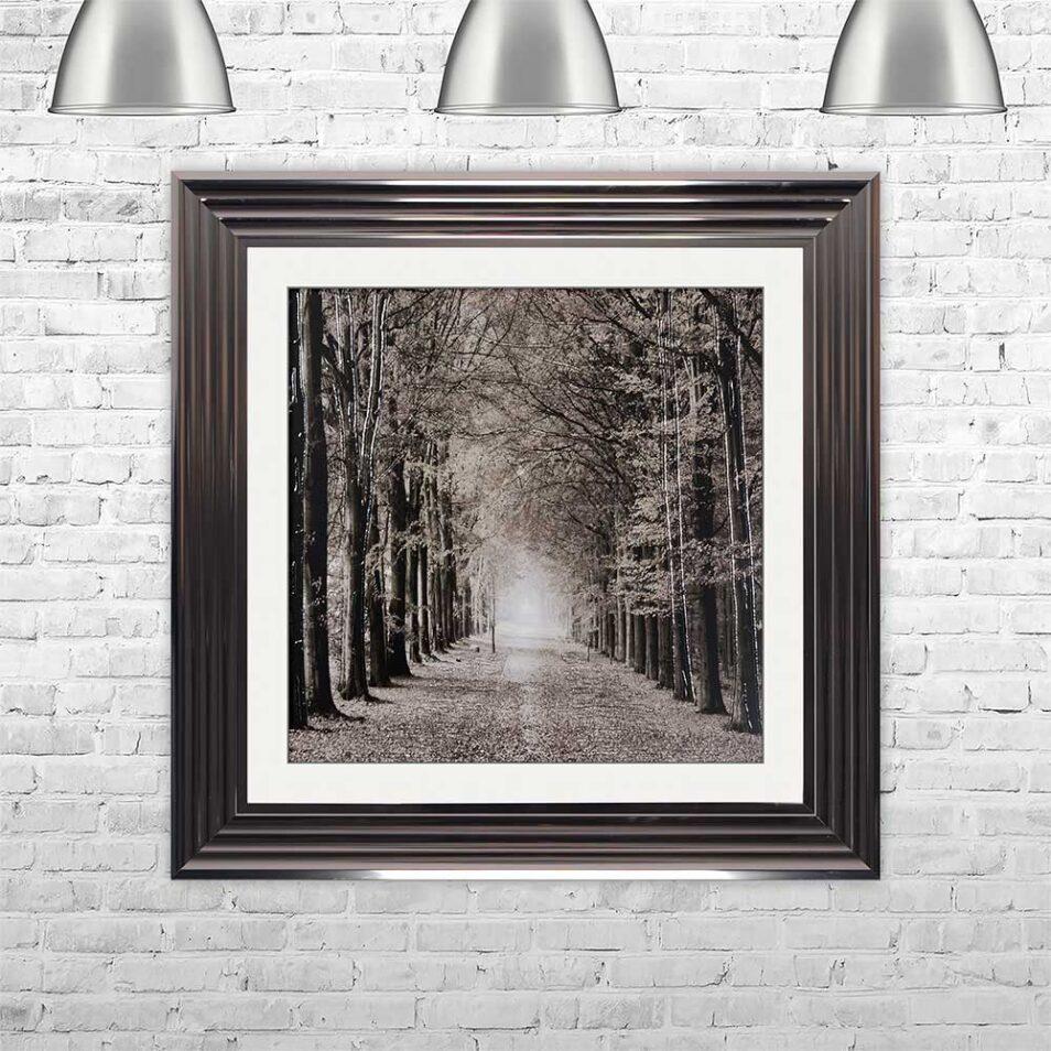 Path Ahead - Tree Walk - Metallic Frames - Mounted