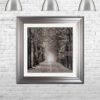 Path Ahead - Tree Walk - Silver Frames - Mounted