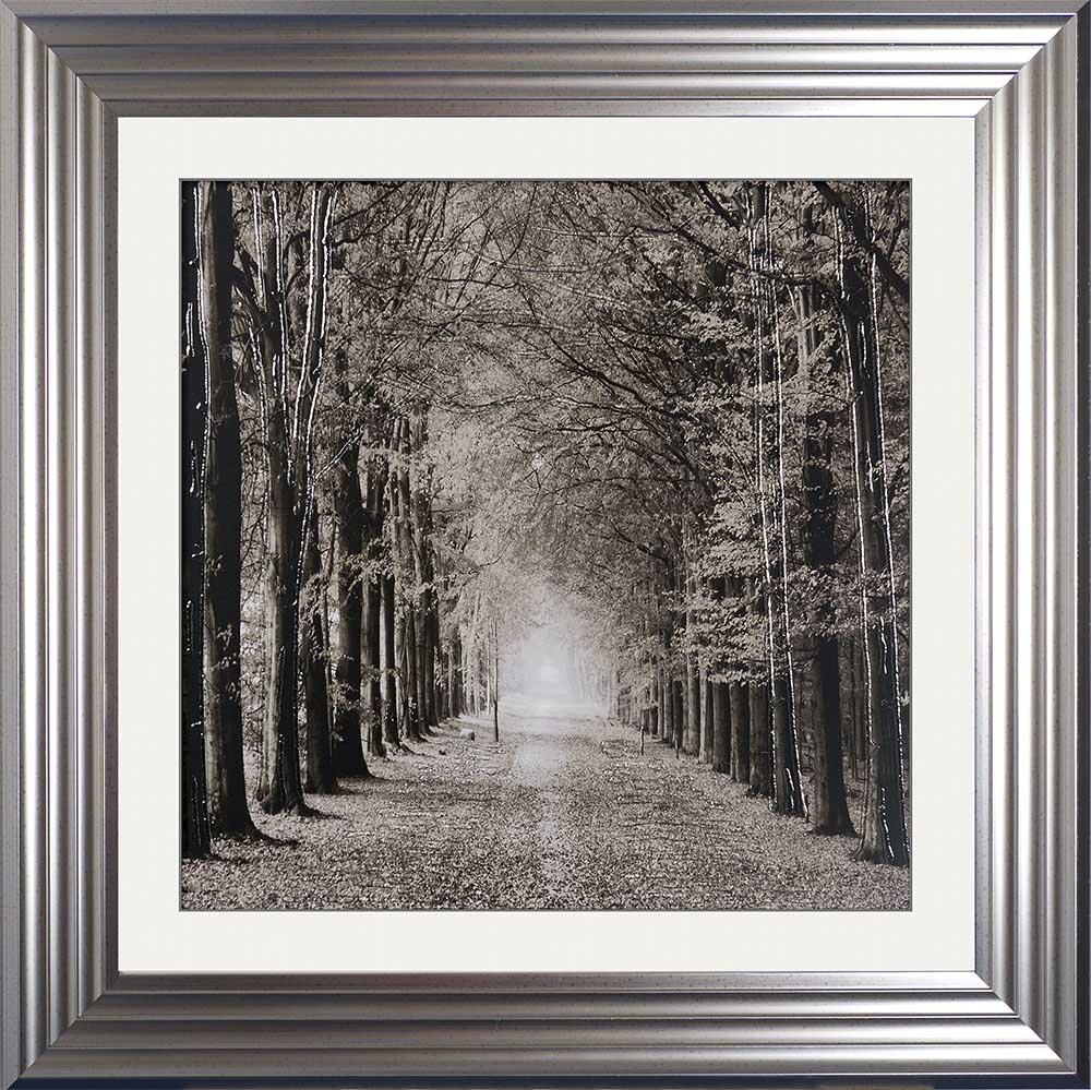 The Path Ahead (Silver 75 Frame)