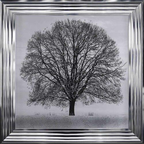 A Winter's Tree - Winter Tree - Chrome Frame
