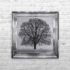 A Winter's Tree - Winter Tree - Chrome Frame - Mounted