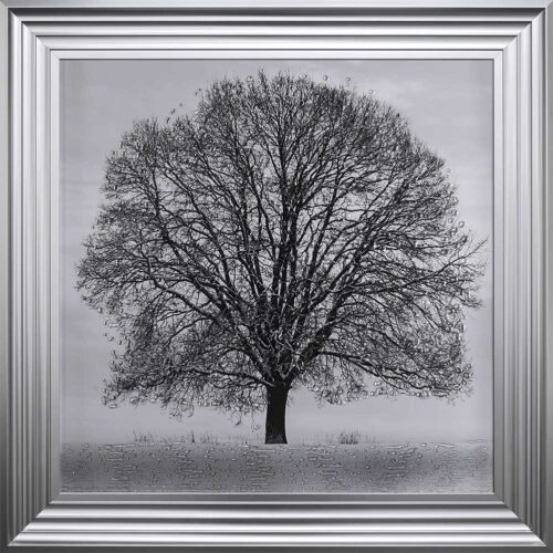 A Winter's Tree - Winter Tree - Steel Frame