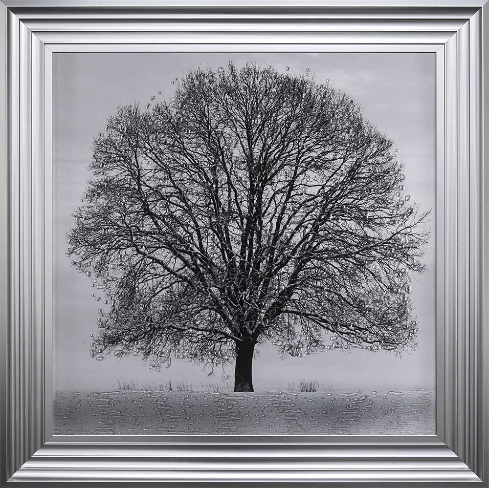 A Winter's Tree (Steel 75 Frame)