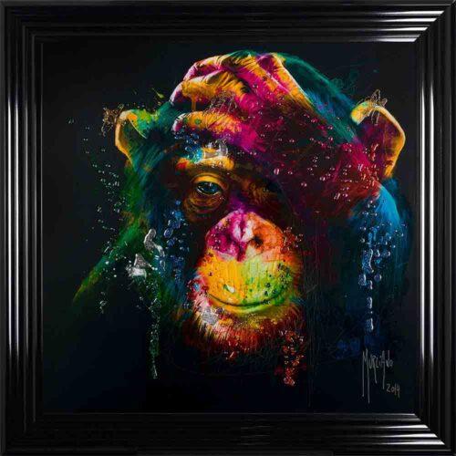 Darwin - Chimp - Chimpanzee - Black Background - Black Frame