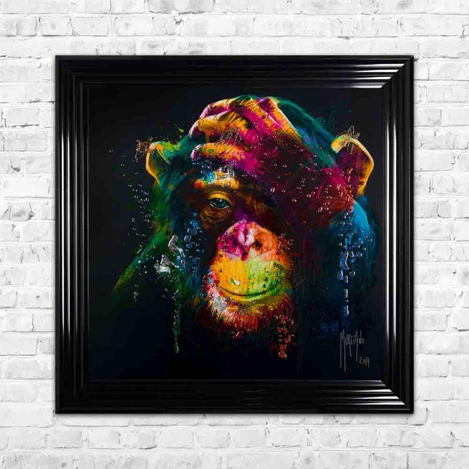 Darwin - Chimp - Chimpanzee - Black Background - Black Frame - Mounted