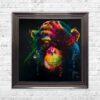 Darwin - Chimp - Chimpanzee - Black Background - Metallic Frame - Mounted