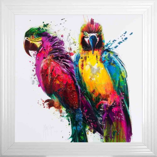 Parrots - Colourful Birds - Patrice Murciano - White Frame